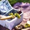 Cetas picnic Optima- ACHICA.es